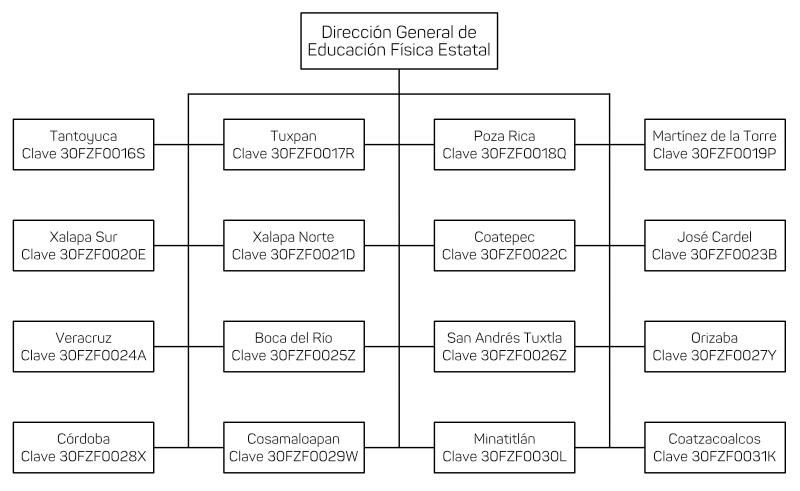 Organigrama Inspecciones