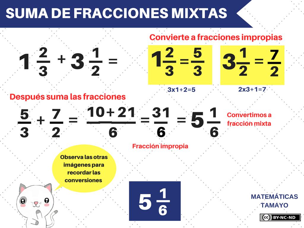 Qué son los denominadores y los numeradores? | Geniolandia