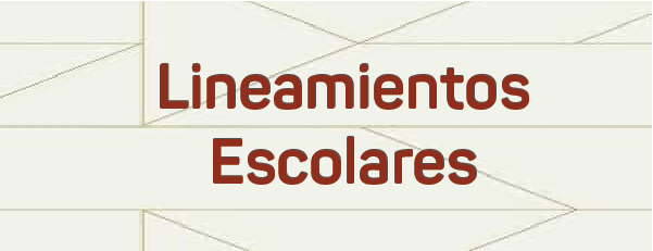 Banner-Lineamientos[8488]